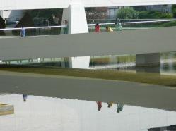 reflexo (2)